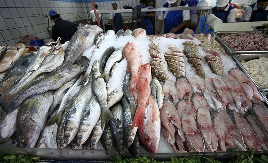Alerta la SSEA para evitar consumir pescado chino