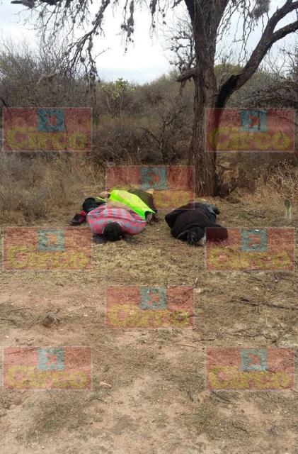 Encuentran cuerpos de 2 hombres y 1 mujer con huellas de tortura en Zac