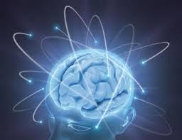 Científicos mexicanos logran regenerar tejido cerebral