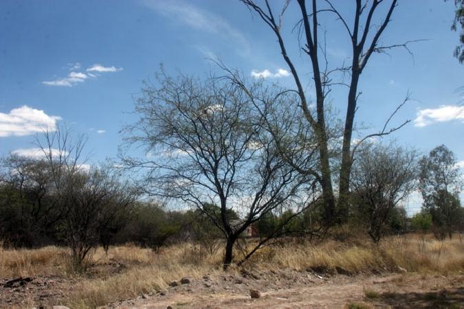 Proespa apoya a los municipios en la preservación del medio ambiente