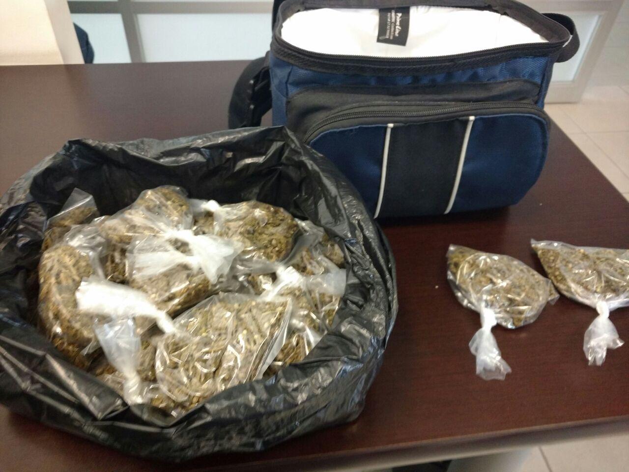 Consignan a importante narcodistribuidor de marihuana