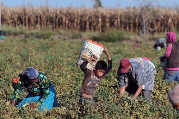 4 de cada 10 mexicanos no tienen oportunidades de desarrollo