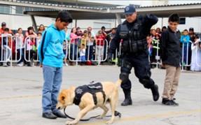 Tere Jiménez tendrá pocos recursos para prevención del delito:JAMC