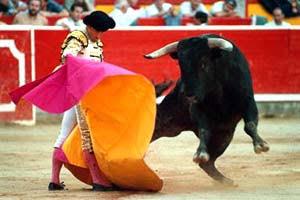 Anulan prohibición de corridas de toros en Cataluña