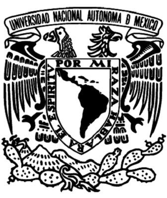 Premiarán la UNAM y el IMSS la investigación en prevención de salud