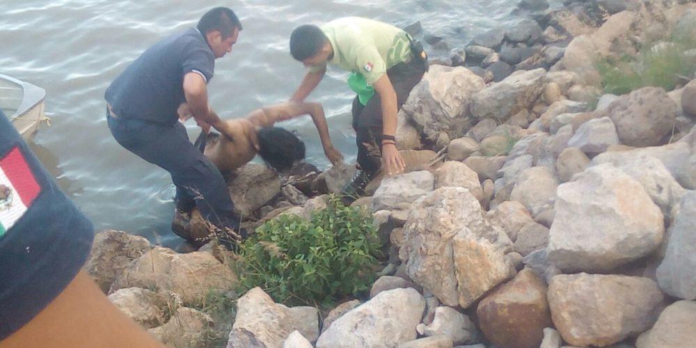 Joven pescaba en presa de Lagos de Moreno y murió ahogado