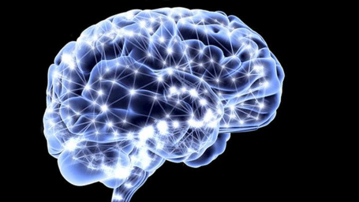 Leer historias crea patrones universales en el cerebro