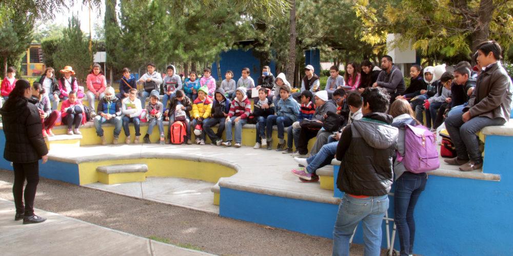 Ofrece el vivero municipal visitas guiadas a estudiantes for Vivero municipal