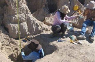 Hallan en China huellas animales más antiguas hasta el momento