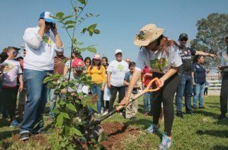Busca MuniAgs reforestar 400 mil árboles