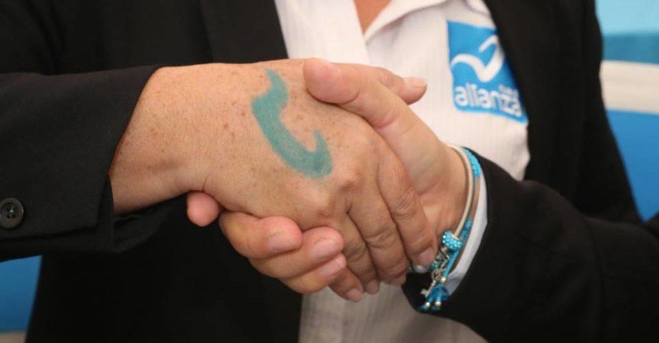 Pone el INE en marcha la liquidación del PES y del Panal
