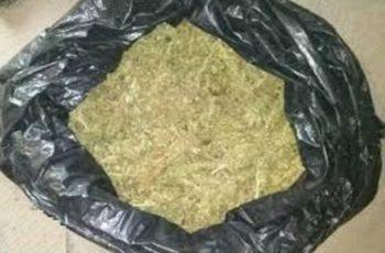 Capturan a sujeto que portaba bolsa con marihuana en Ags