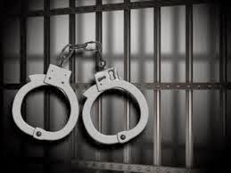 A la cárcel de Aguascalientes a Leonardo y Daniel por narcos