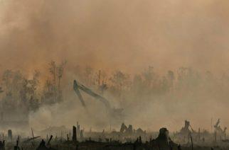 Pierde la Tierra batalla contra el cambio climático