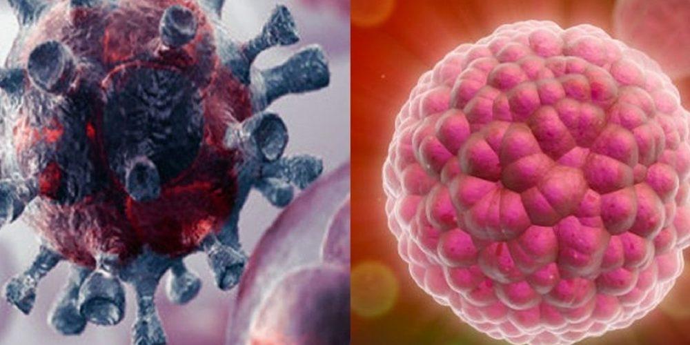 Científicos descubren una forma de detectar el cáncer en 10 minutos
