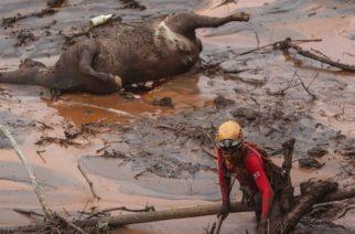 Aumentan a 60 los muertos por la tragedia minera en Brasil