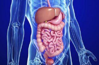 Podríamos tener un segundo cerebro en el aparato digestivo