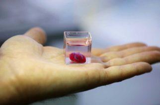 Crean en impresora 3D un corazón que palpita