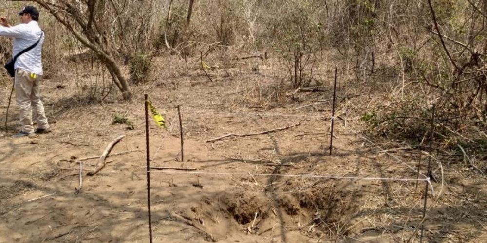 Hallan al menos 36 fosas clandestinas en Veracruz