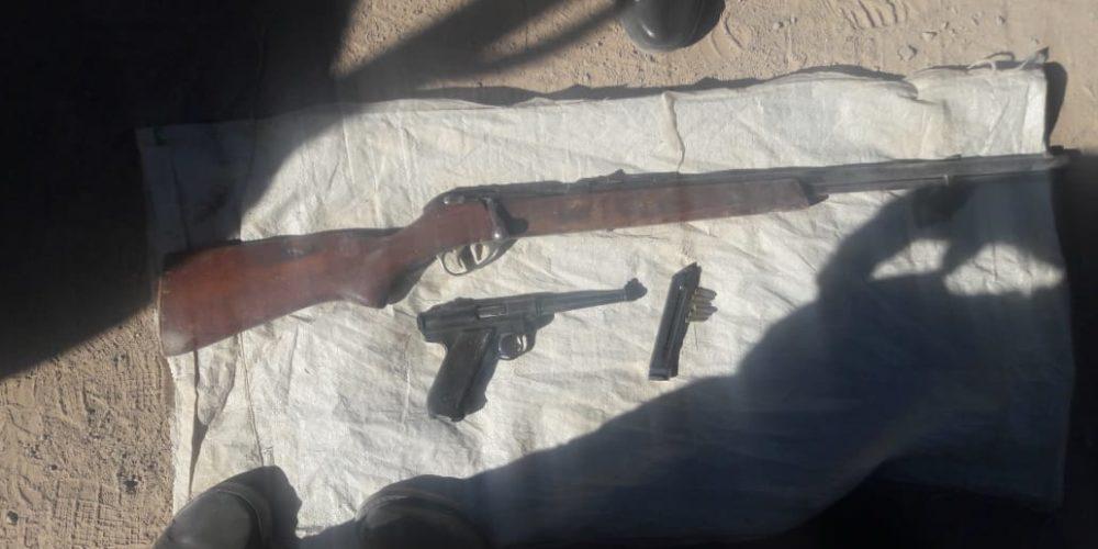 """En operativo """"Escudo"""" fueron aseguradas dos armas de fuego"""