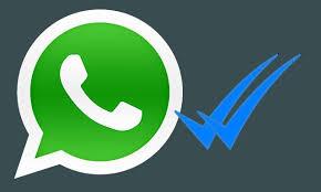 WhatsApp: así puedes ocultar tus estados y elegir con quién compartirlos