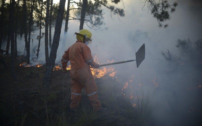Gobierno hace recorte al programa de brigadas contra incendios