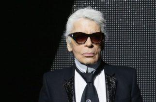 Hay una nueva araña que es llamada como el icono Karl Lagerfeld