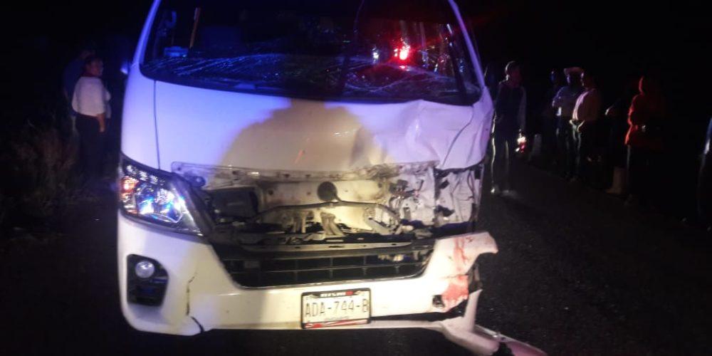 Choque entre auto y vaca deja res muerta y un joven herido en Aguascalientes