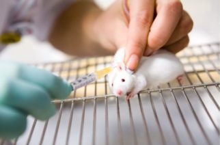 Este tratamiento ha eliminado por primera vez el VIH en ratones