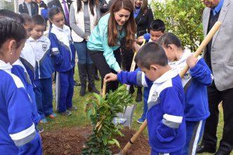 Más de 400 mil árboles sembrados durante la administración de Tere Jiménez