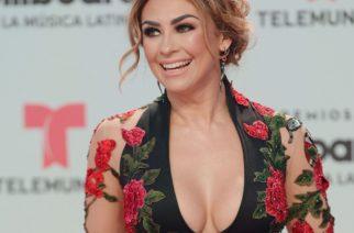 Aracely Arámbula enciende las redes con su bikini