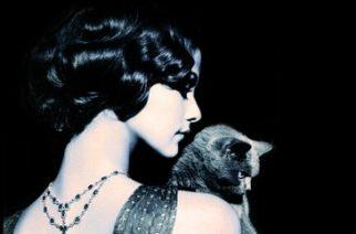 Estudios aseguran que los gatos tienen relaciones más intensas con mujeres