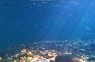 Descubren en el fondo del mar el cuerpo de mujer abrazando a su bebé