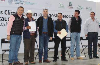 Por sequía entregan apoyos a ganaderos de Cosío