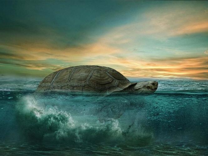 A los 344 años, muere la tortuga más vieja de África