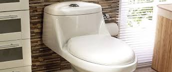 ¡Felicidades a la tasa de baño en su día!