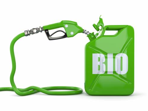 México debe apostar a los biocombustibles: UAA