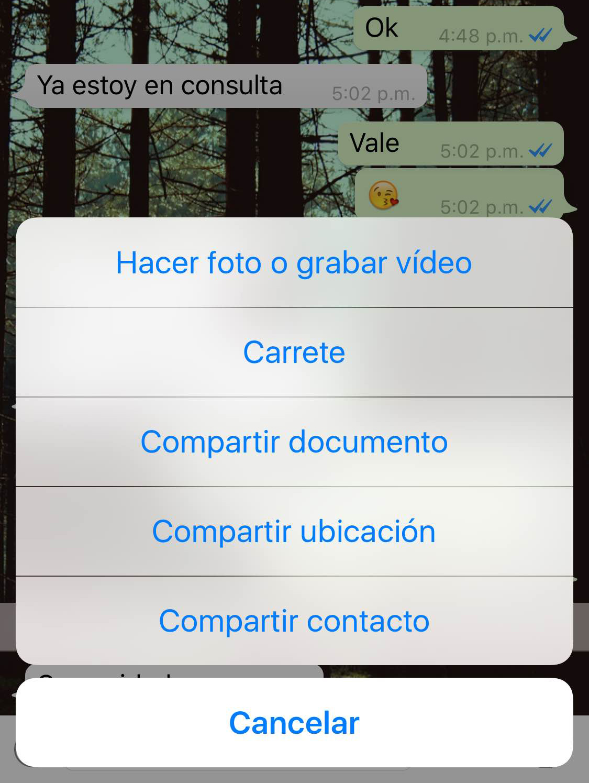 Ya podrás compartir documentos en Whatsapp
