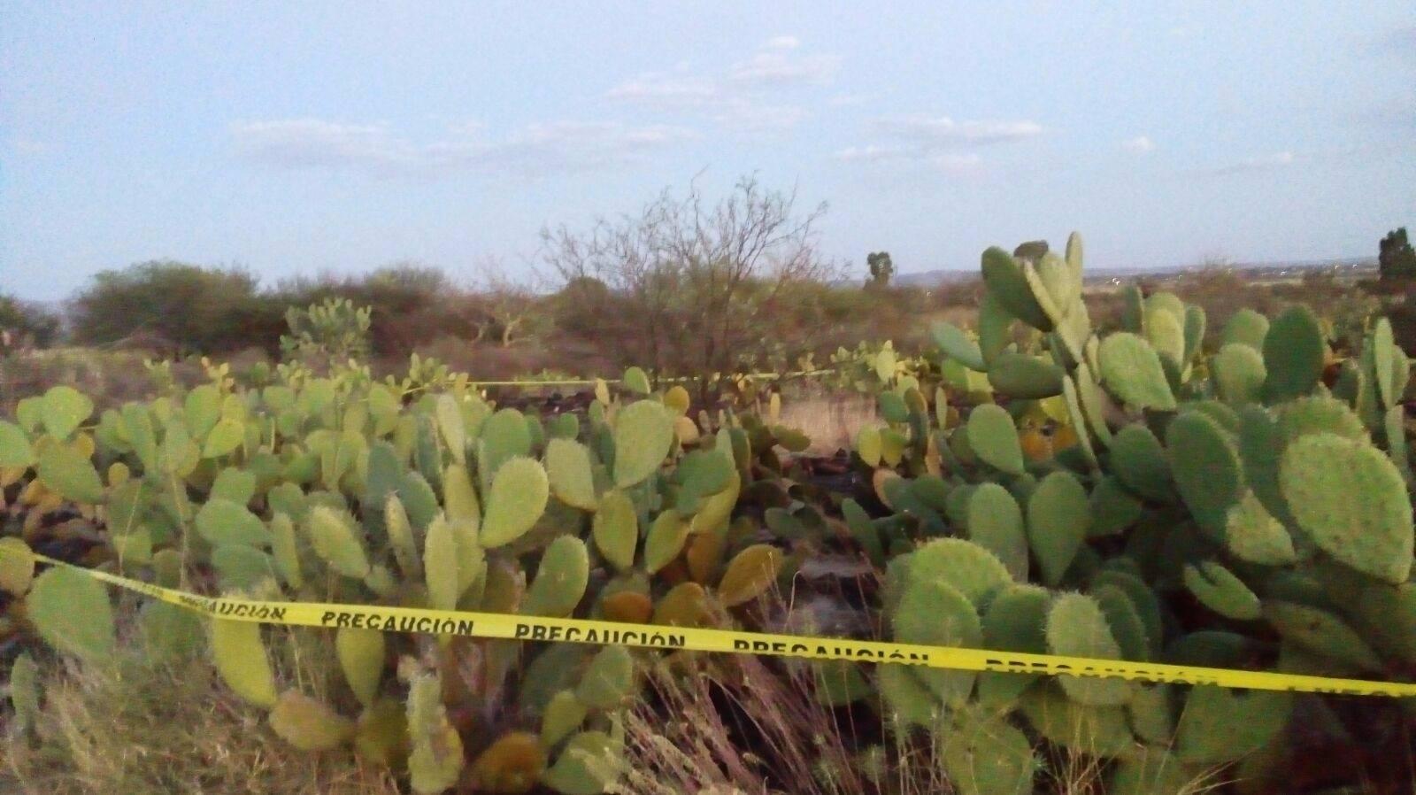 Muere anciano en incendio de pastizal en Rincón de Romos, Ags.