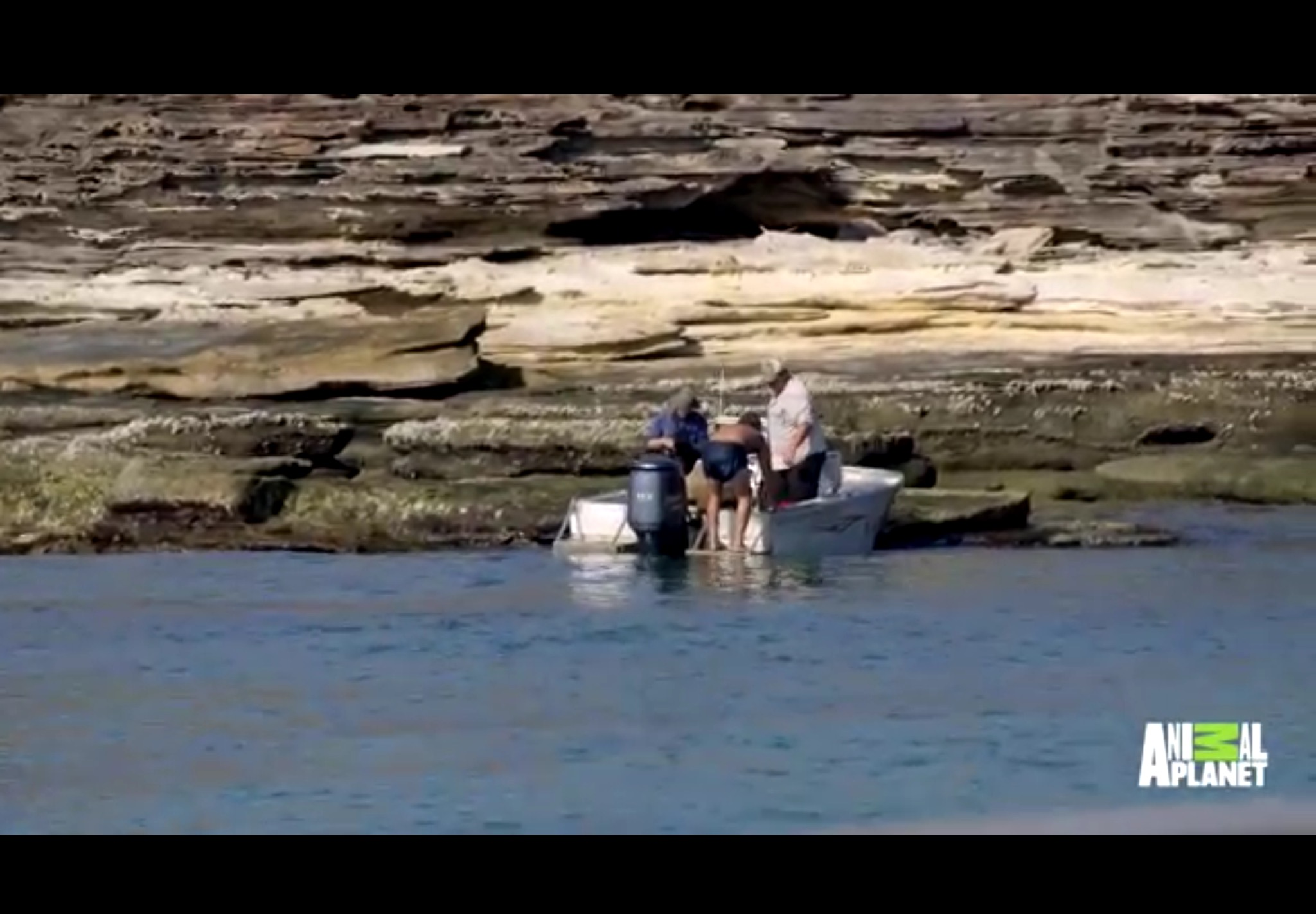 Equipo de Animal Planet encuentra náufrago en isla desierta