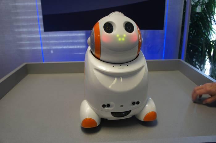 Crean robot de compañía para adultos y niños