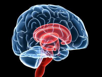 Tener estudios universitarios aumenta el riesgo de tumores cerebrales