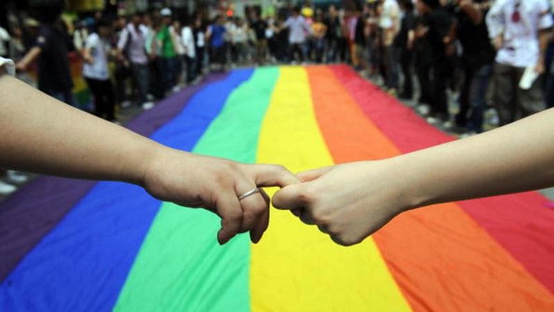 Comunidad LGBTTI también tiene credenciales para votar. Reviran al FNF