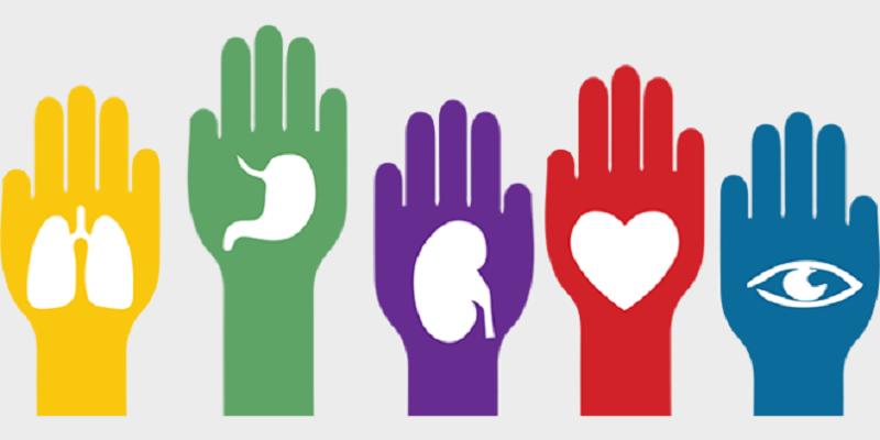 Promoverá el PVEM una iniciativa para impulsar la donación altruista de órganos