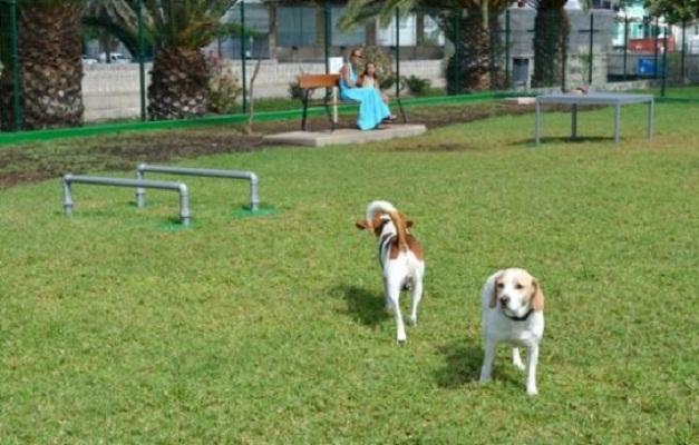 Se retrasa la conclusión del parque para mascotas en el municipio de Aguascalientes