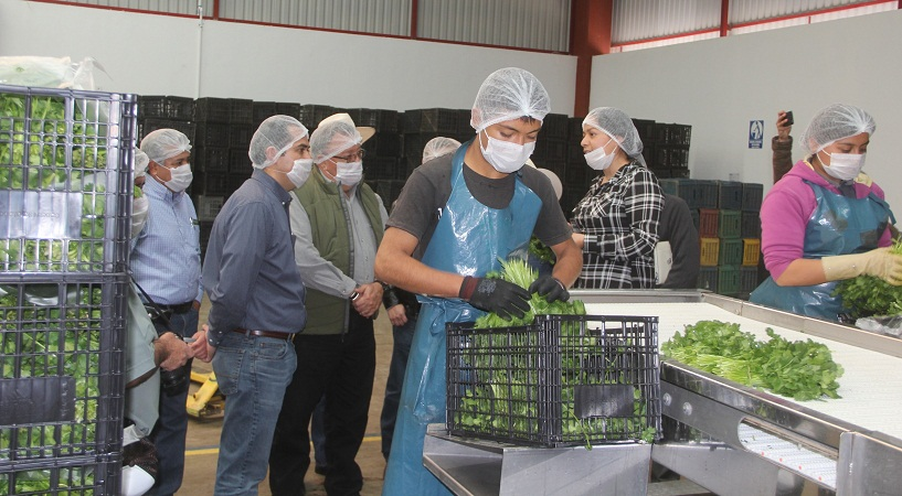 Productos agropecuarios de Ags. cuentan con la mayor calidad e inocuidad