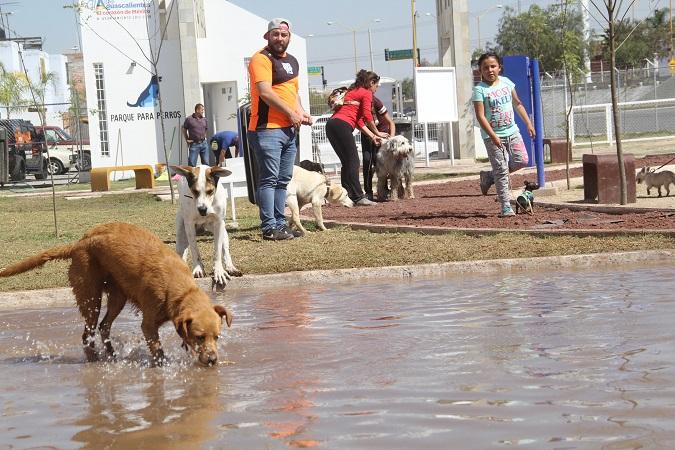Ofrecerán cursos de adiestramiento en Parque para Perros