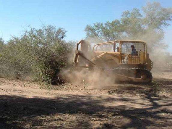 Ciudadanos pretenden construir casas a un costado de la Presa de los Parga