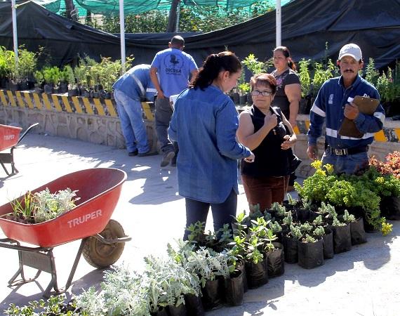Fomenta Servicios Públicos cultura de donación de plantas en Ags.
