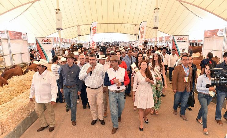 Inaugura MOS Expos Agroalimentaria y Ganadera en la Isla San Marcos